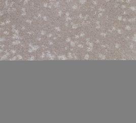 白珍珠砂岩