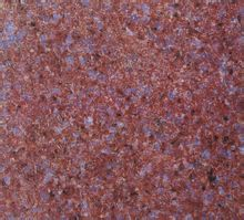 富地红石材