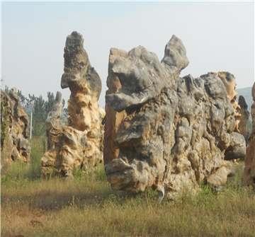 风景奇石1