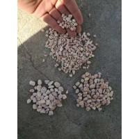 供应鹅卵石雨花石滤料小石子