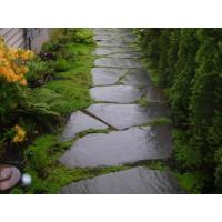 园林景观地面铺路石 乱形石 广场露天石 园林板岩地板 乱石板