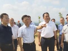 梧州市委书记蒋连生赴岑溪调研石材矿产问题