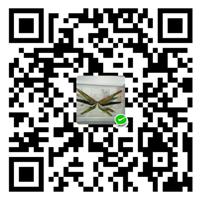 杨青青个人微信号:476847113